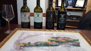 presentazione vini cantina mazzoni